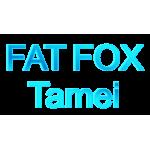 Fat Fox-Tamei
