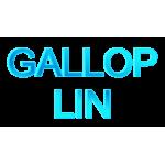 Gallop Lin