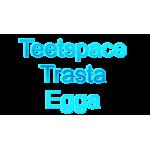 Teetspace-Trasta-Egga